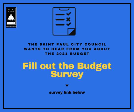 budget survey 2021