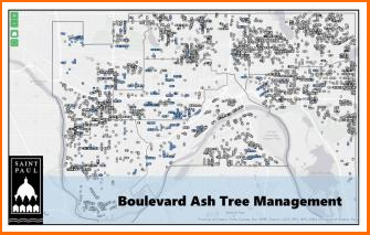 Ash tree management map