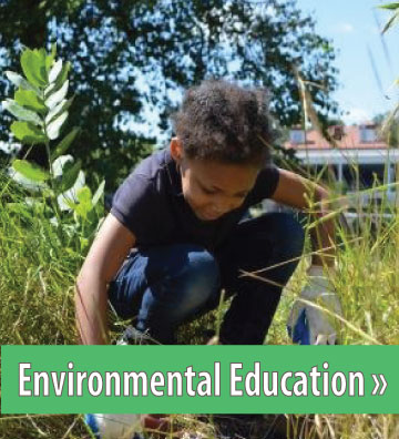 Click to view Environmental Education Section