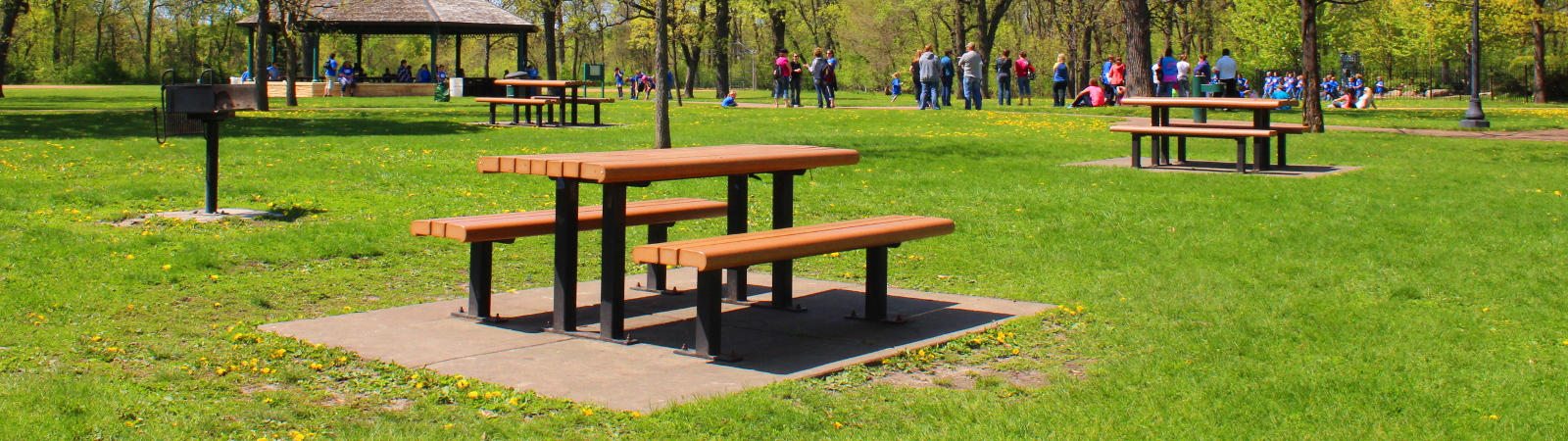 People gathering at a public park with picnic tables and gazebos