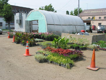 Photo of hoop houses in Saint Paul