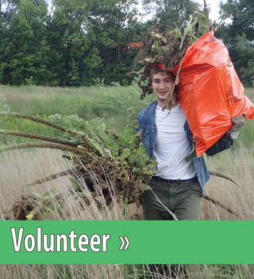 Click to view Volunteer Section