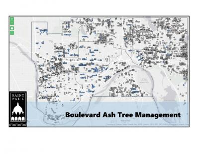 Map of Boulevard Ash Trees in St. Paul