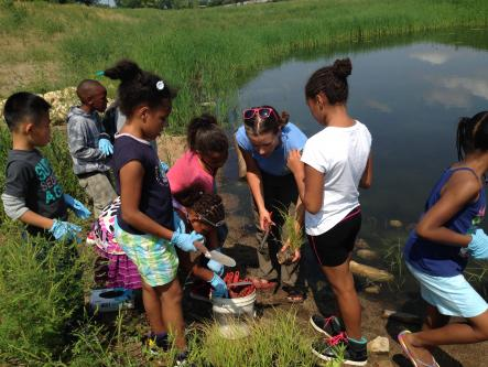 sPARK youth planting at Trout Brook Nature Sanctuary