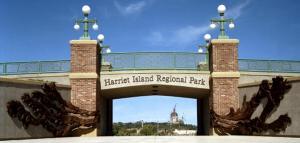 Harriet Island Flood Wave picture
