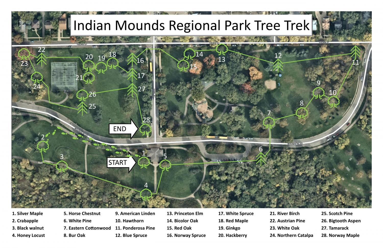 Mounds Park Tree Trek