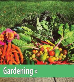 Click to view Garden Section