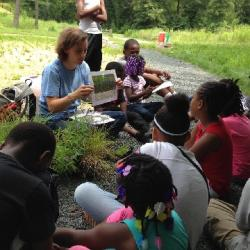 Students learn about native plants in the Como Woodland Outdoor Classroom