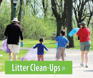 Text: Click for information about Litter Clean-Ups, Image: Man, woman, and 2 children picking up litter at a park
