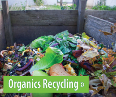 Image of compost in a bin, button link to Organics Recycling